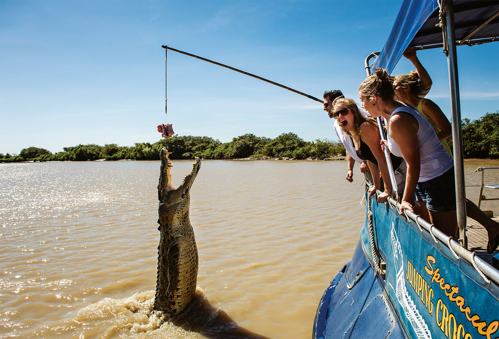 Spectacular Jumping Crocodile Cruise, Adelaide River