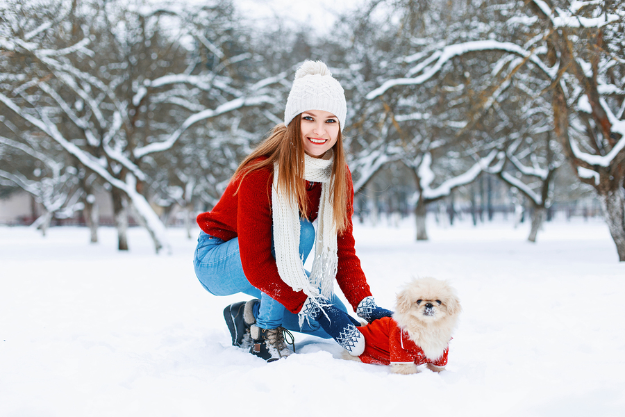 Beautiful Girl In Red Knitted Sweater Walking A Dog On A White S